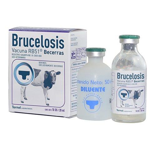 RB51 Brucelosis Becerras 6 1 1